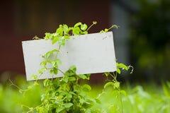 In bianco firmi fuori nel verde Fotografia Stock