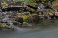 Bianco latteo girato dell'acqua corrente tramite un'esposizione lunga come scorre intorno alle rocce muscose verdi e marroni immagine stock libera da diritti
