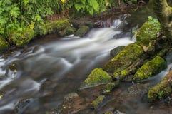 Bianco latteo girato dell'acqua corrente tramite un'esposizione lunga come scorre intorno alle rocce muscose verdi e marroni fotografie stock libere da diritti