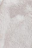 Bianco simile a pelliccia della pelliccia di alta risoluzione strutturato Immagini Stock Libere da Diritti