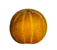 Bianco tailandese del nero del melone del cantalupo Immagini Stock Libere da Diritti