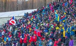 Biathlon Ã-ã-stersund Στοκ Εικόνες