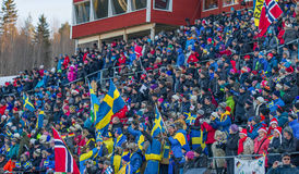 Biathlon Östersund. Crowd during biathlon in  Östersund Sweden Royalty Free Stock Images
