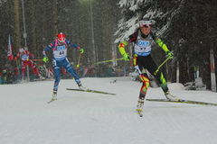 biathlon Obraz Royalty Free