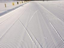 Biathlon arena. Ski tracks at at biathlon arena Stock Photography