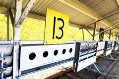 Biathlon die doel nummer dertien schieten perfectioneert resultaat stock afbeelding