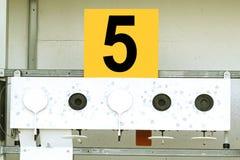 Biathlon . Target sports shooting Royalty Free Stock Photo