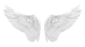 Biały anioła skrzydło odizolowywający Zdjęcie Stock