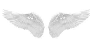 Biały anioła skrzydło odizolowywający Zdjęcie Royalty Free