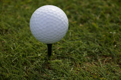 Biały Golfball na trójniku Obraz Royalty Free