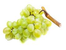 Biały winogrona Zdjęcie Royalty Free