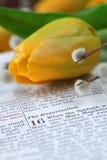 Bibbia con testo nel contrassegno 16 circa la risurrezione Fotografia Stock Libera da Diritti