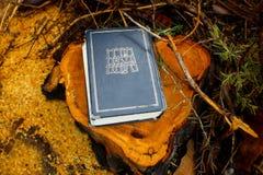 Bibbia ebraica o Tanakh Torah, Neviim, Ketuvim Raccolta canonica dei testi ebrei, libro ebreo l'israele fotografie stock libere da diritti