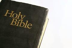Bibbia santa su una priorità bassa bianca Immagine Stock Libera da Diritti