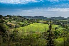 Bibbona in Val di Cecina, Livorno, Toskana, Italien - Panorami Stockbilder