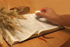 Bibel Lizenzfreies Stockfoto