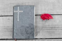 Bibel mit roter Rose Stockbild