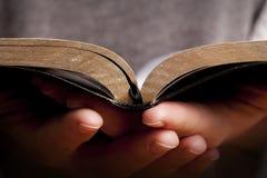 bibelholdingkvinna Royaltyfri Fotografi