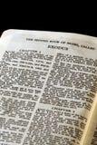 bibelutflyttningserie royaltyfri bild