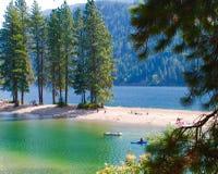 Biber-Bucht in Idaho Stockbilder