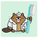 Biberzahnarzt, der eine Zahnbürste hält stock abbildung