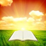 Bible illustration stock