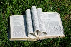 Bible Stock Photos