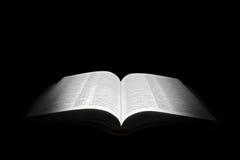 Bible royalty free stock photos
