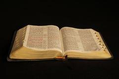 bible Imagens de Stock Royalty Free