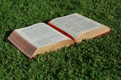bible. Open bible laying on grass Royalty Free Stock Image