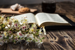 Bible and coffee Royalty Free Stock Photography