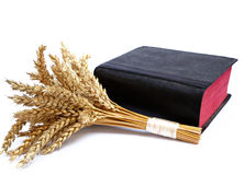 Bible and ears of wheat on a white background Stock Photos