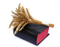 Bible and ears of wheat on a white background Royalty Free Stock Photo