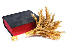 Bible and ears of wheat on a white background Stock Images