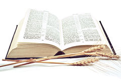 Bible on white background Royalty Free Stock Photo