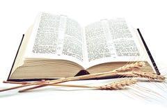 Bibbia su fondo bianco Fotografia Stock Libera da Diritti