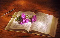 Bible flowers. A spray of phlox lying across an open Bible Stock Image