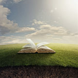 Bible on grass. Stock Photo