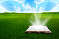 Bible on grassy field. Floating bible on grassy field Stock Images