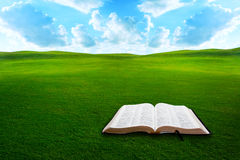 Bible on grassy field Stock Image