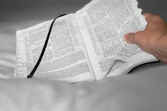 Bible and hand. Hand holding an open Bible royalty free stock photo