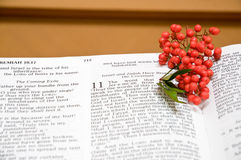 Bible and holly berries. A closeup view of an open bible decorated with a sprig of bright red holly berries Stock Photography