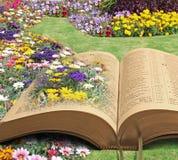 Bible memorial paradise park Stock Photo