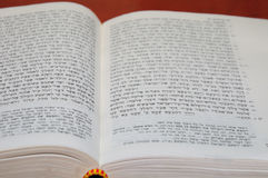 Bible. Old testament. Royalty Free Stock Photo