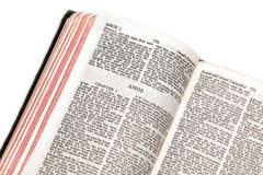 Bible open to amos. Holy bible open to the book of  amos, against a white background Royalty Free Stock Photography