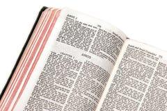 Bible ouverte d'AMOs Photographie stock libre de droits