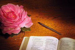 Bible, pen, & rose. Bible open to Song of Solomon with pen and fabric rose Stock Images