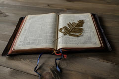 Bible and pressed fern leaf royalty free stock photo