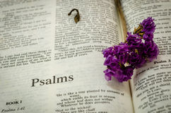 Bible : Psalms. Bible Psalms page and vintage purple flower Royalty Free Stock Photography