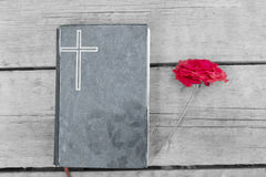 Bible with Red Rose. Bible in garden with red rose stock image